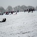 Snow-lovers in Hilly Fields