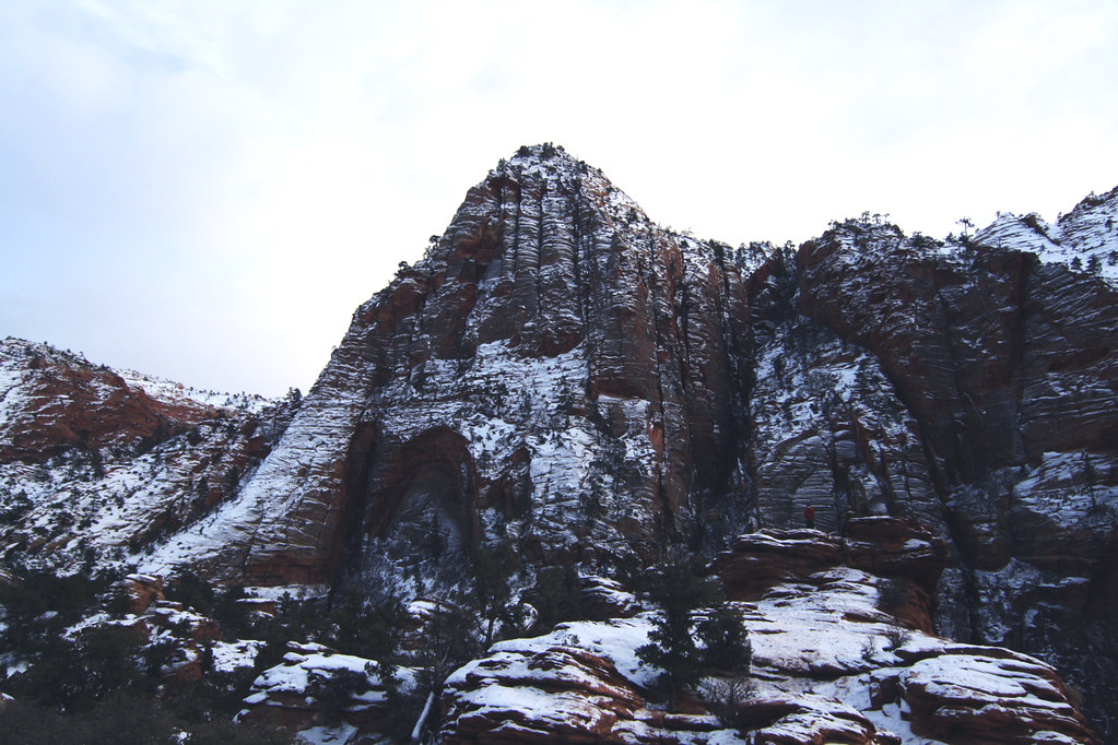 rocks in zion
