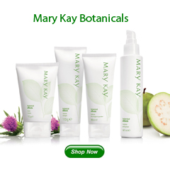 mary-kay-botanical-effects-combination-to-oily-set