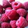 January 24: I love raspberries