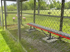 chain-link fencing, fence, yard,