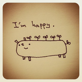 happy chan