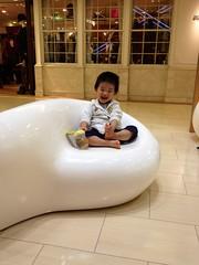 アトレ恵比寿の椅子に座るとらちゃん (2012/10/10)