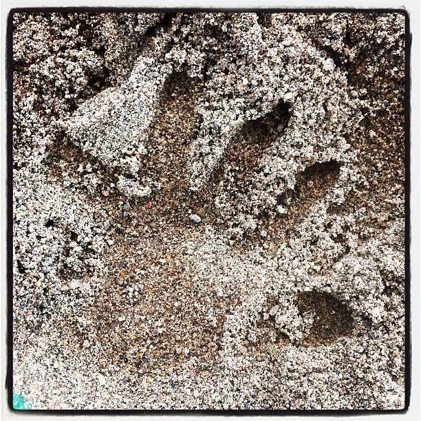 Sandbox baby handprint