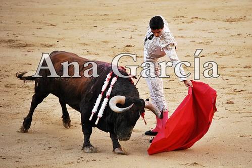 Miguel15