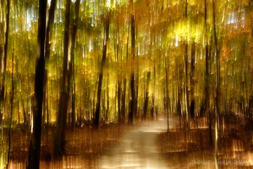 ICM: Autumn by andiwolfe