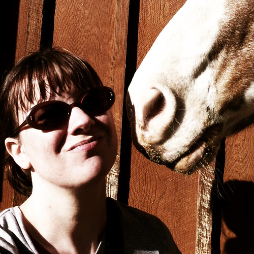 40 Of 52. Horse Love by The Shutterbug Eye™