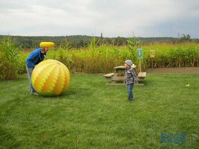 Dunvegan Gardens Corn Maze 2012