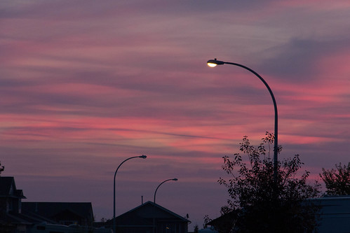 sunset streetlight pinksky