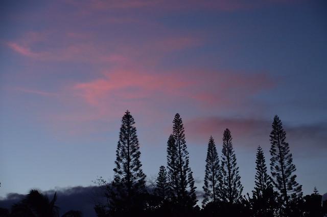Sunset in Puna (DSC_3888)