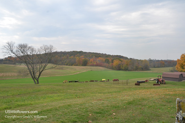Farm in Middle Tennessee