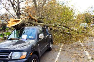 Hurricane Sandy Brooklyn NY