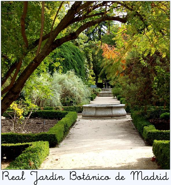 Real jard n bot nico de madrid flickr photo sharing for Jardines 29 madrid