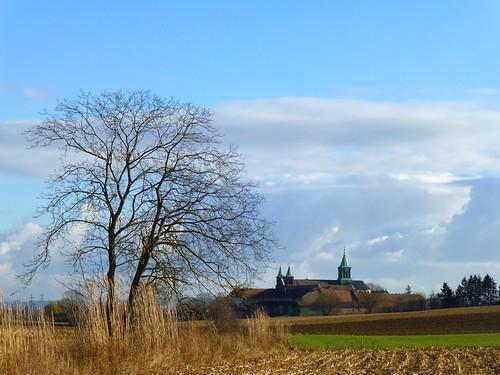 L'Oelenberg