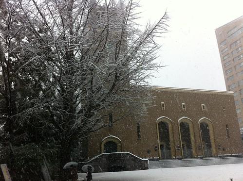 Waseda in snow
