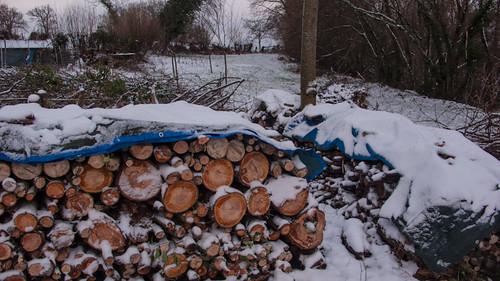 France, snow, firewood