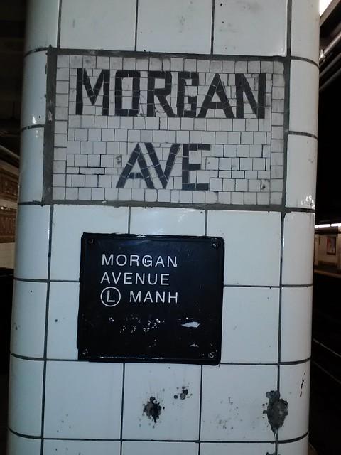 Morgan Ave Brooklyn Loft Bed Bug