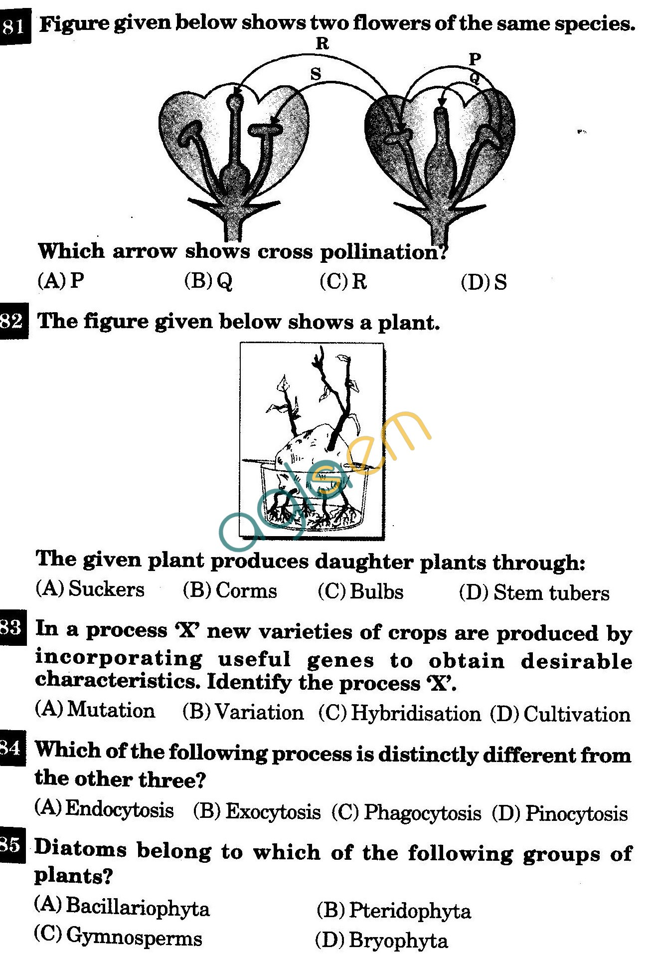 Class IX Question Paper with Answers - Biology