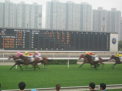 沙田馬場 Sha Tin Racecourse