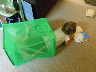 Reading in the laundry basket (3)