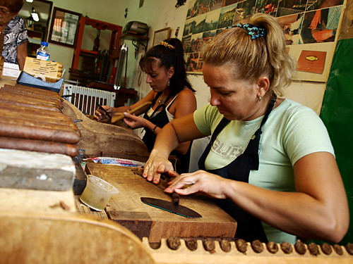 Hand rolling cigars
