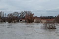 La Moselle - Ferme inondée