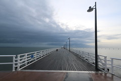 on and around shorncliffe pier, july 2016 (4)
