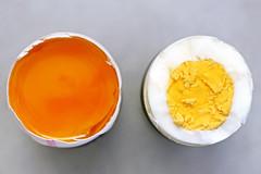 ein rohes Ei und ein gekochtes Ei - a raw egg and a boiled egg