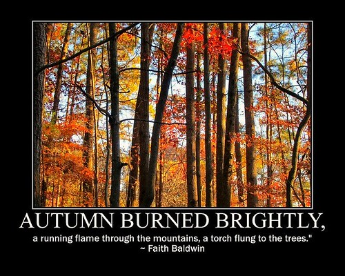Autumn burned brightly ...