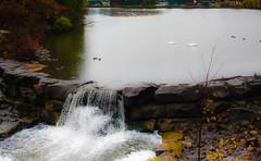 Rush of Water Overflowing