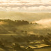 Misty Morning by the milster