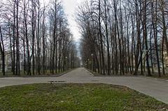 Lomonosov Moscow State University park