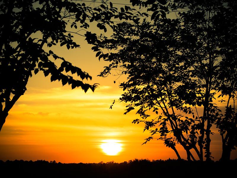 Sunset Cracker Barrel  Us Hwy 27