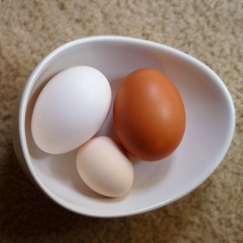 Egg difference