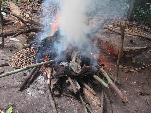 Burning the meat in poachers camp