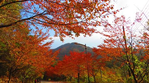 Mount Seoraksan