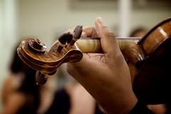 The Violin  Violin Master Pro Or Violin Master Plop? 8124653020 00163163e0 m