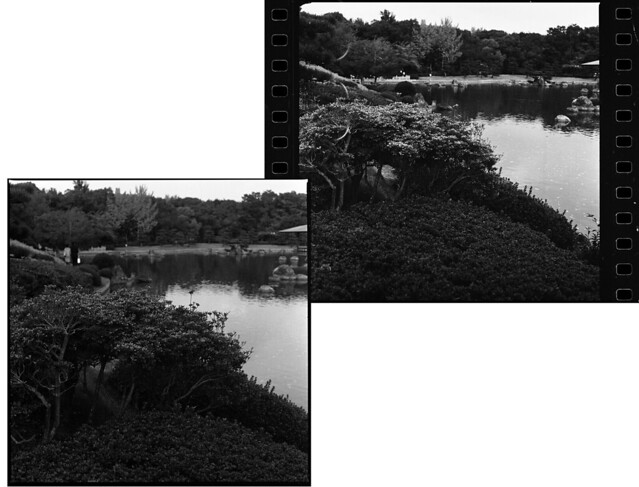 Kodak Double-X 2405 vs 400TX