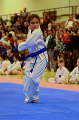 taekkyeon(0.0), individual sports(1.0), contact sport(1.0), taekwondo(1.0), sports(1.0), tang soo do(1.0), combat sport(1.0), martial arts(1.0), karate(1.0), japanese martial arts(1.0),