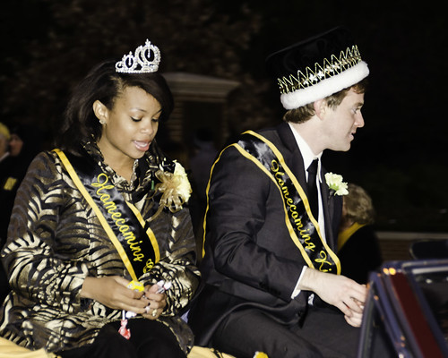 Zero Dark Thirty Homecoming - Royalty