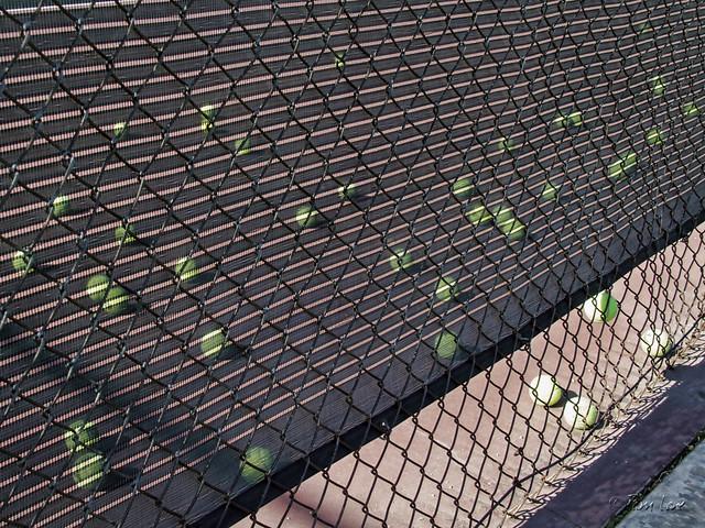 Furman Park tennis balls