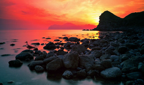 sunset red sea sun nature water sunshine rock stone sunrise canon landscape coast view seagull ukraine nd crimea blacksea filtr 5dmarkii