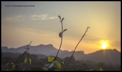 morning sun sunrise canon photography hotel landscapes lanka srilanka kandalama 60d