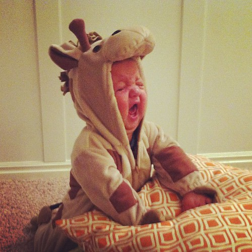 Happy Halloween from one very unhappy giraffe.