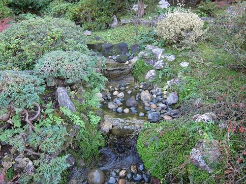 Hakone Japanese Gardens, Saratoga, CA IMG_2421