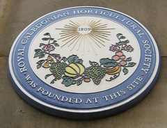 Photo of Multicoloured plaque number 12002