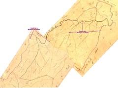 Cadastre Napoléonien Zonza feuilles D1+D5 avec le Haut-Cavu dans la région du Finicione et de Luviu et le chemin de la Montagne aux Plages