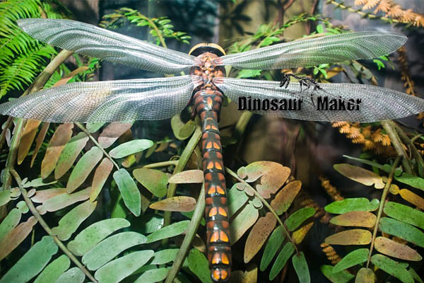 Animatronic Insect Dragonfly