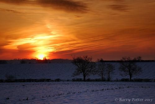 trees sunrise landscape nikon yorkshire earlymorning redsky pocklington eastyorkshire barrypotter valeofyork yabbadabbadoo eastridingofyorkshire yorkshirewolds nikond40 nikkor18105mm barrypotternet edenmedia barrypotteredenmedia