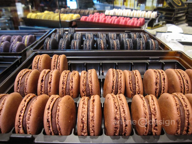 Urban Tea Merchant macarons
